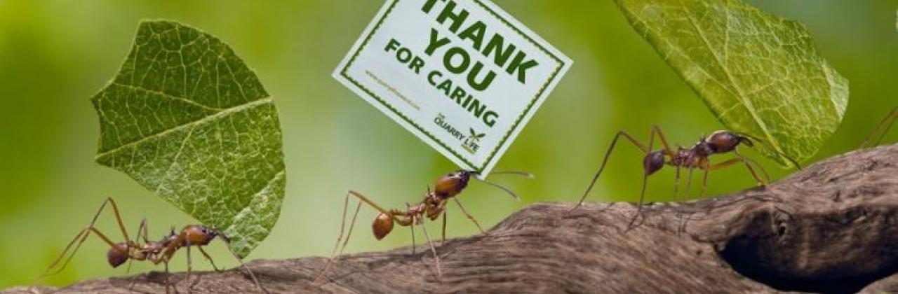 Thank you for caring.